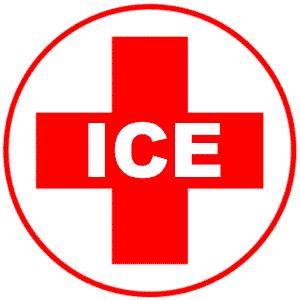 1-ICE